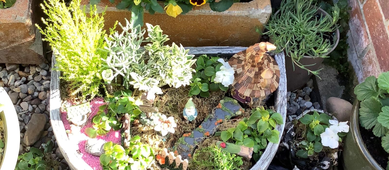 My fairy garden provides a haven just for me