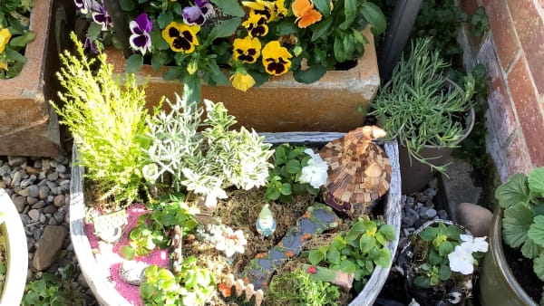 A Carer Wellbeing Grant has brought me happiness through my Fairy Garden