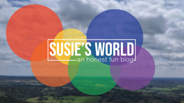 Susies World